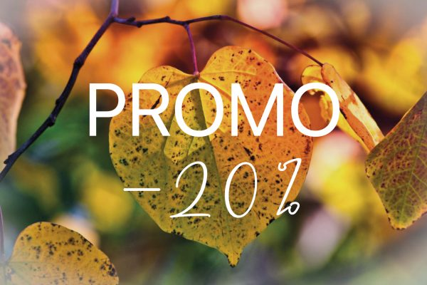 Promo offre automne 20 normandie